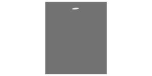 FAWSsits Logo